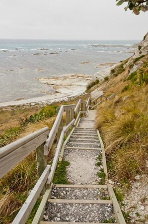 Peninsula Walkway: The stairs from cliff top to sea level.