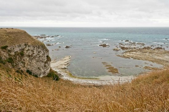 Peninsula Walkway: View from the cliff top walk.