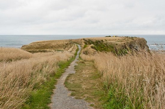 Peninsula Walkway: The cliff top walk, north end.