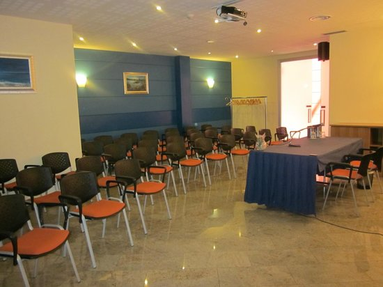 Luna Hotel Motel Airport: SALA PLUTONE