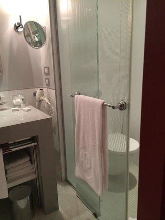 Hotel de Paris: Toilet