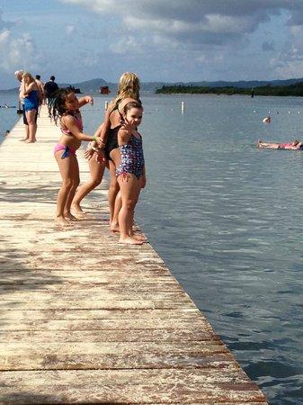 Mahogany Beach : Kids jumping off the dock !!!