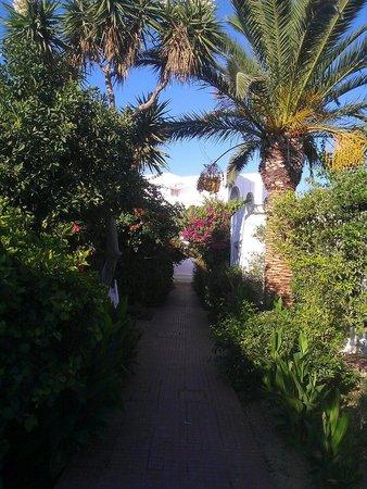Dessole Le Hammamet Resort: 08/2013