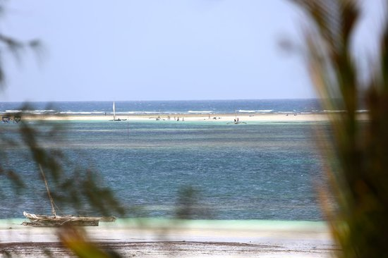 Diani Beachalets: view from cottage