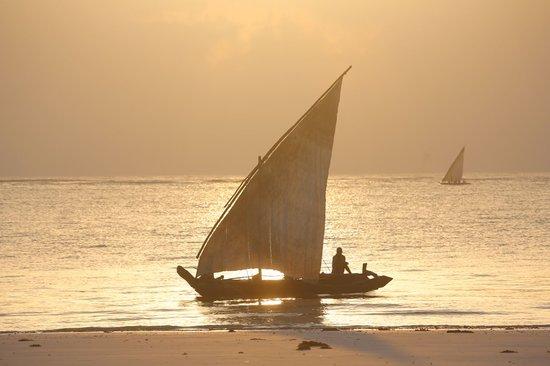 Diani Beachalets: cottage sea view