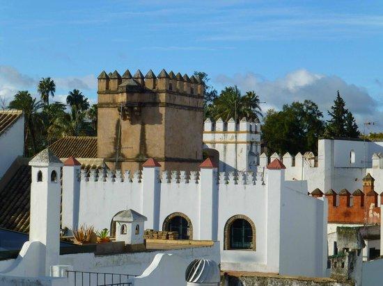 Apartamentos - Suites Santa Cruz: view from our roof terrace