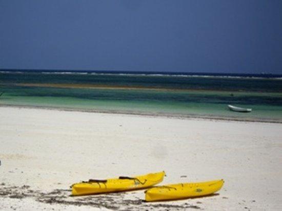Diani Beachalets: beach