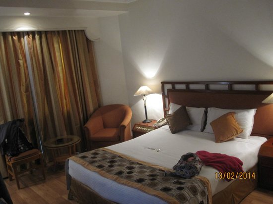 Royal Singi Hotel : Room