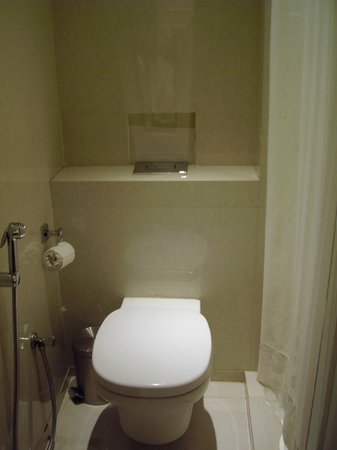 Grand Godwin Hotel: Bathroom up to standards