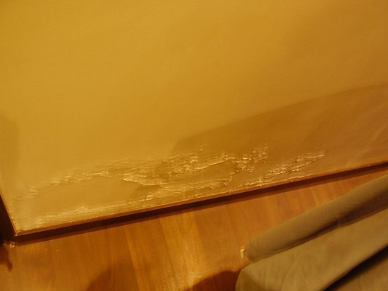 Grand Godwin Hotel: Damp walls hidden by coffee table