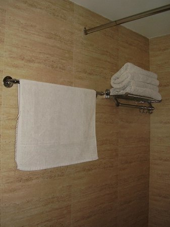 Hotel Maniram Palace: Towels in poor condition