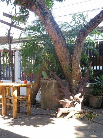 Happy Home Guest House: Garden