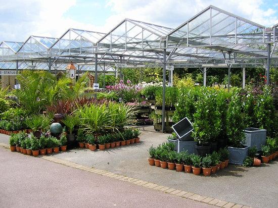 Tamar View Nurseries and Garden Centre Restaurant Saltash
