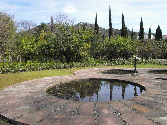Cafetería Jardín Botánico La Concepción: Vista del entorno de la cafetería