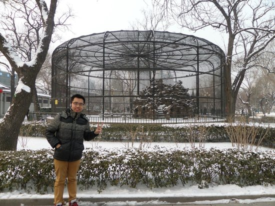 Tianjin People's Park: Tianjin People Park Bird Cage