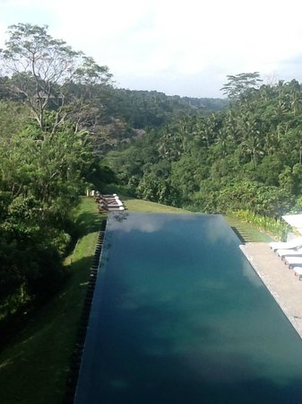 Alila Ubud: view from bar /dining area