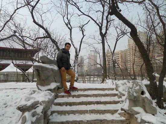 Tianjin People's Park: Tianjin People Park