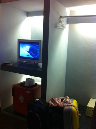 Dream Garden Hostel: small tv and fridge in room