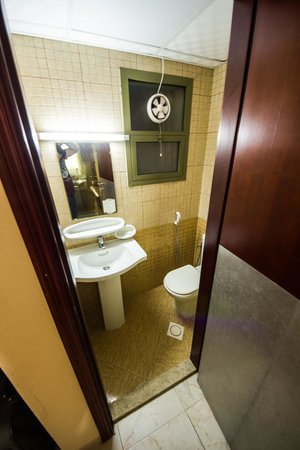 Safari Hotel Apartments: WC