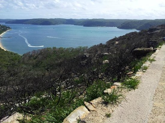 Barrenjoey Lighthouse: headland burnt out