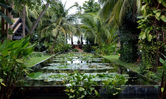 Anantara Bophut Koh Samui Resort: vue du hall d'entrée