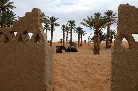 Auberge Les Roches : porte sur les dunes