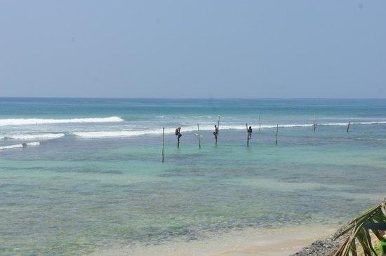 Surfing Villa: le spot en face