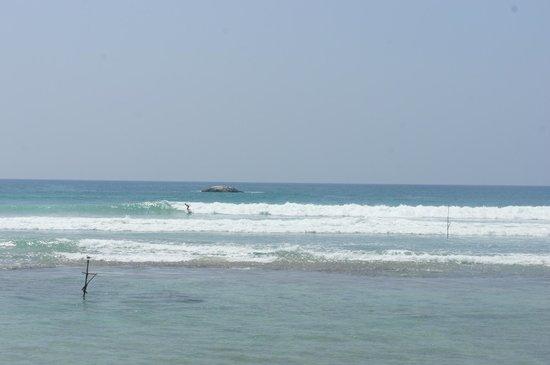 Surfing Villa: spot