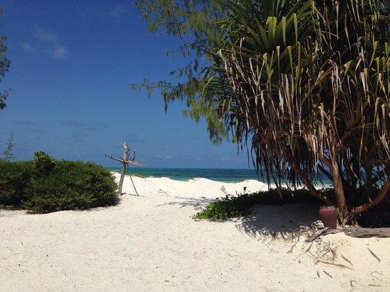 Hakuna Majiwe Beach Lodge : Panorama