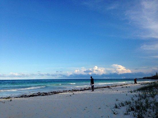Hakuna Majiwe Beach Lodge : Spiaggia