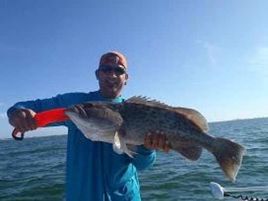 Snook stamp fishing charters fort myers fl beoordelingen for Fishing charters fort myers florida