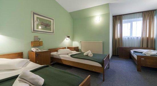 Bizovacke Toplice - Hotel Termia: Hotel Termia