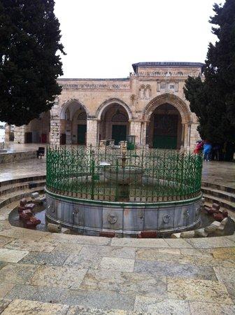 Mosquée Al-Aqsa : Les jardins