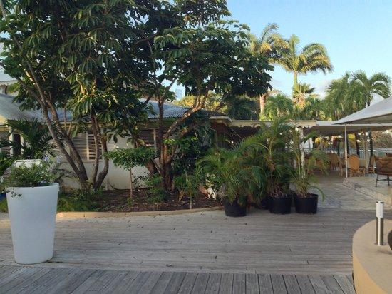 Hotel Residence Golf Village : parc de l'hôtel