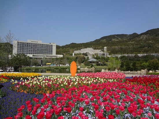 The Westin Awaji Island Resort & Conference Center: 明石海峡公園のチューリップとホテル