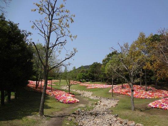 The Westin Awaji Island Resort & Conference Center: 明石海峡公園