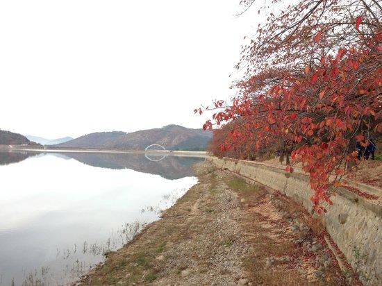 Hotel Hyundai Gyeongju : Danau buatan