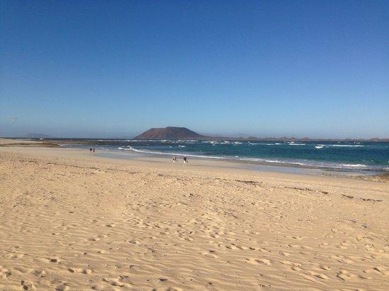 Oasis Duna Hotel: Flag beach