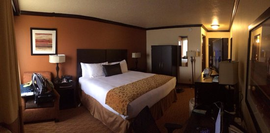 The Park Inn by Radisson Salt Lake City – Midvale: King room