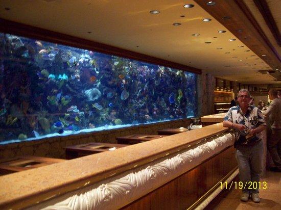 The Mirage Hotel & Casino: unique lobby