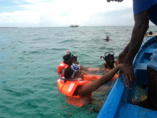Cruzeiro Safaris - Malindi Day Tours: Diving to view the coral reef down under