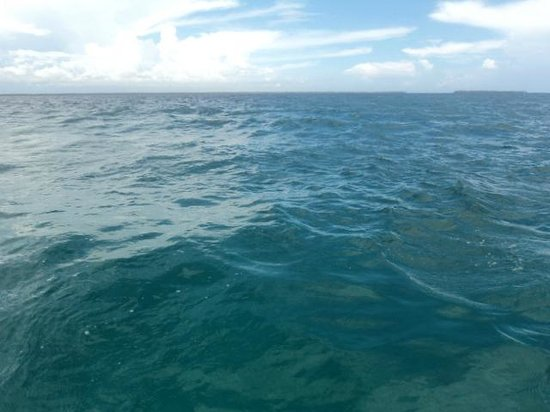 Cruzeiro Safaris - Malindi Day Tours: Clear ocean