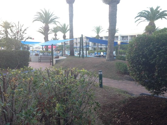 Sea World Resort: View from our patio.