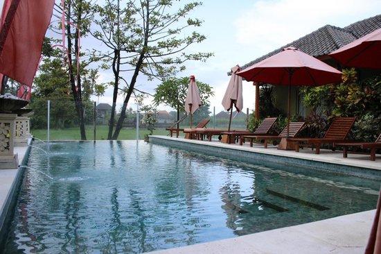 Aleesha Villas: Pool