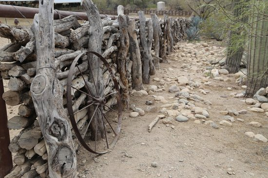 Tanque Verde Ranch: Fence line