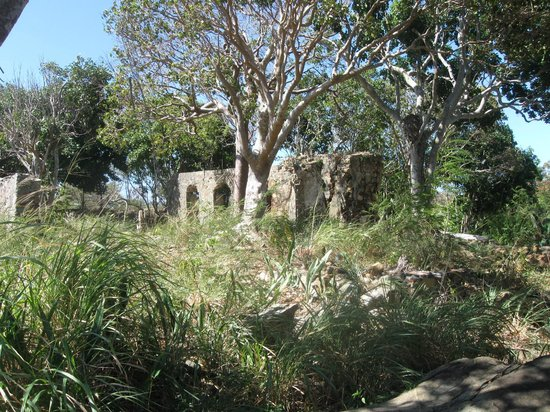 Ruins on Hassel Island