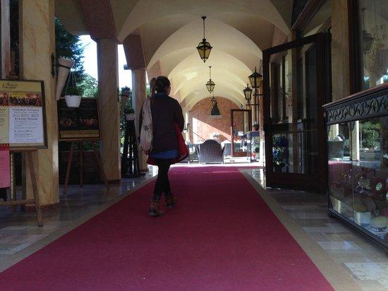 Hotel Belle Arti: Ingresso
