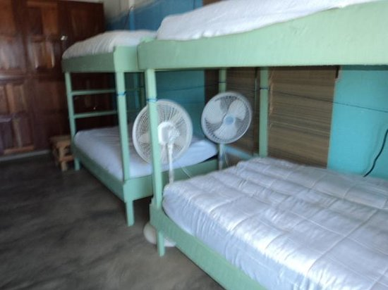 D's Hostel: Enjoy the sea breeze while resting in our comfy dorm.