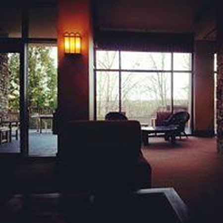 Emory Conference Center Hotel: View from the lobby