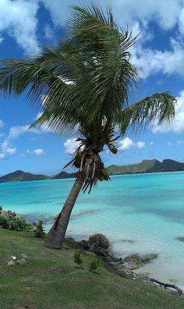 Cocobay Resort: spiaggia